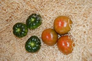 Tomate raf caracteristicas